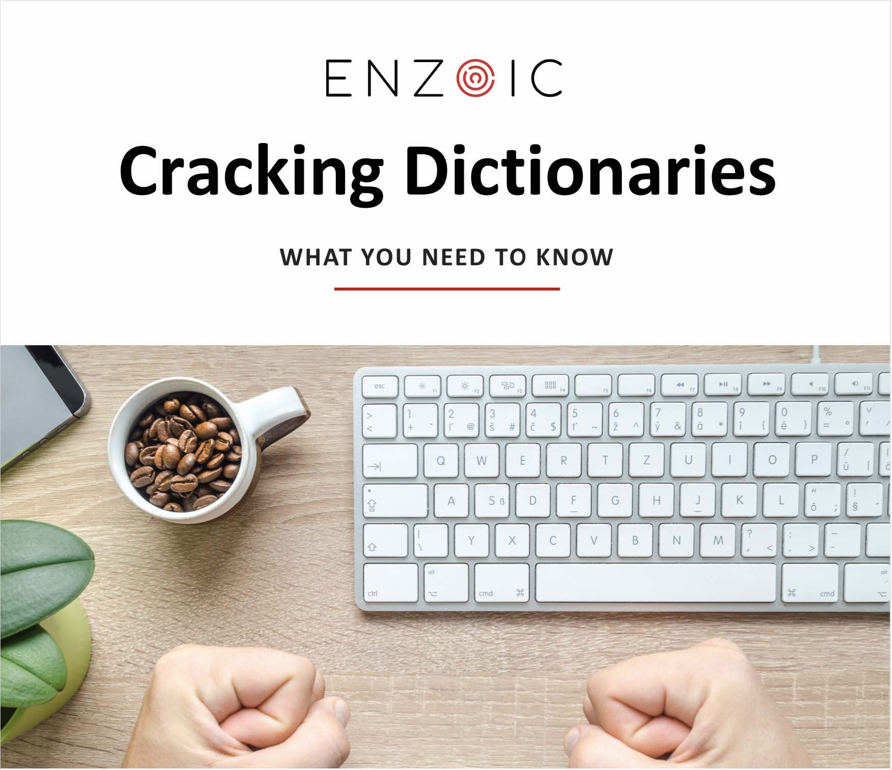 cracking-dictionary copy