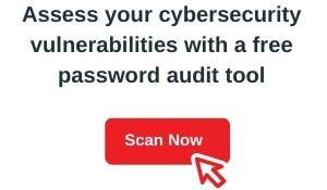 password audit (1)